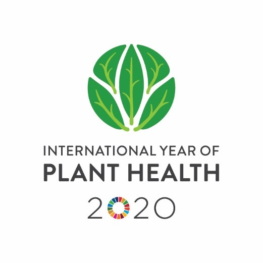 Picture Emblem International year of plant health 2020