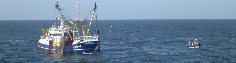 OPERA op zee
